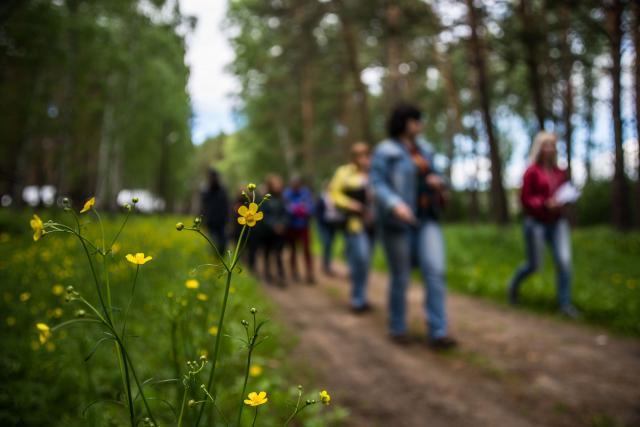 С 12 июня омичи могут отправиться в активные туры по Омской области